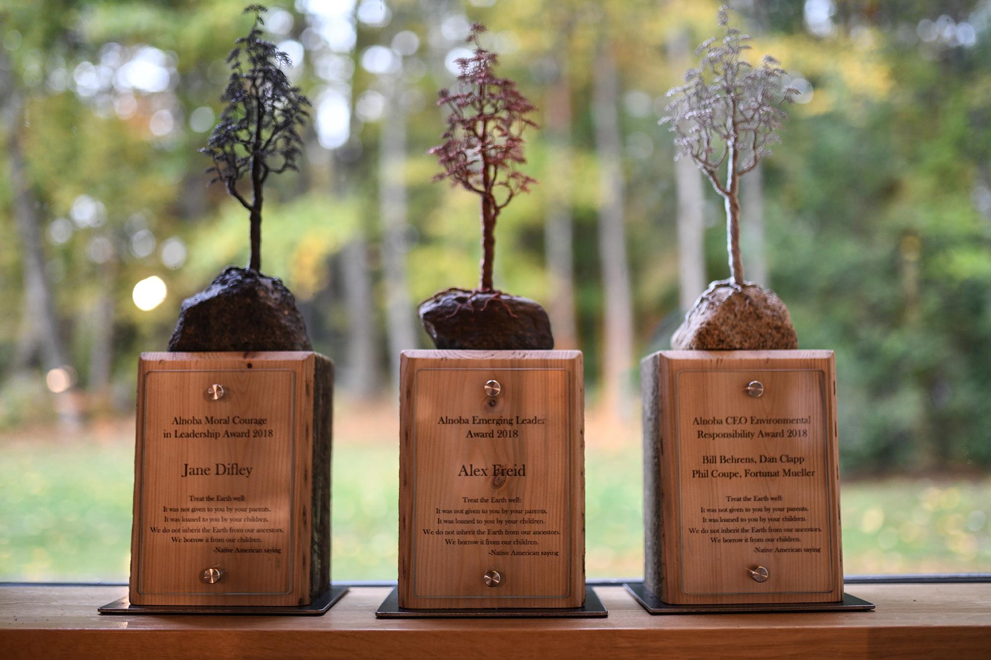 Alnoba Leadership Awards 2018