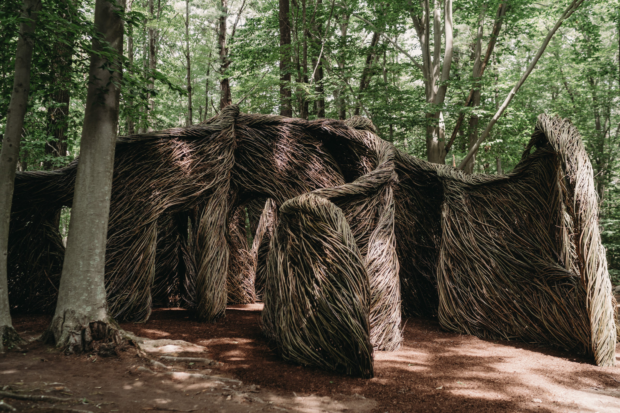 Patrick Dougherty and the shape of enchantment